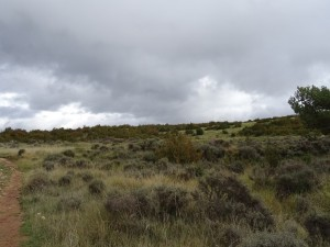 Otín - Nasarre. Garganta Alta. Antiguos cultivos