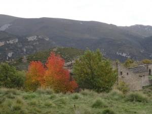 Otín. Al fondo sierra de Balcez