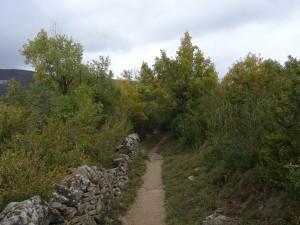 Otín. Camino del Mascún