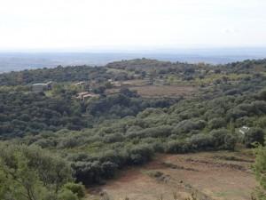 San Pelegrín, camino de los abrigos de Quizáns