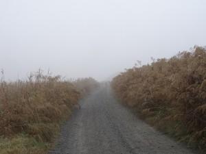Fonz. Camino de Cofita