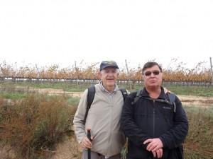 Fonz - Cofita. Zona de viñedos
