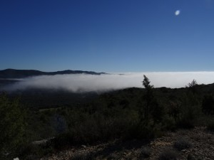 Camino de Suelves. Niebla en el somontano