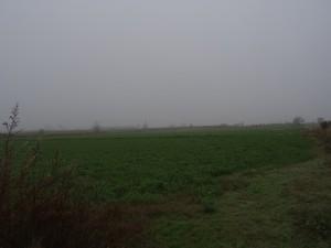 Tierz. Campos de cultivo