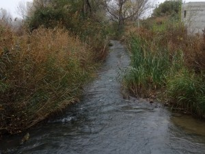 Río Flumen, camino Ermita de Salas