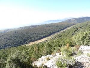 Desde el cerro de Quizáns, vaguada de subida a Sevil