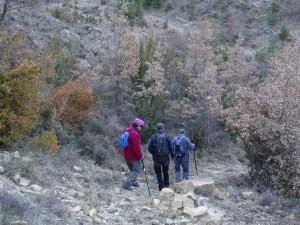 Pardinella. Camino de Biascas de Obarra