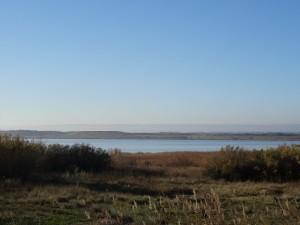 Laguna de Sariñena