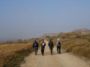 Camino Parque de Aventura La Gabarda