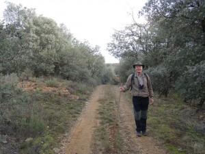 Güel. Camino Casa Pelegrín