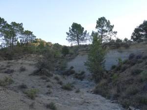 Camino de Pedrui. Afloraciones de margas