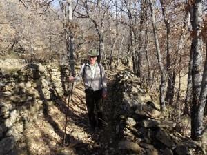 Camino del despoblado de Villá
