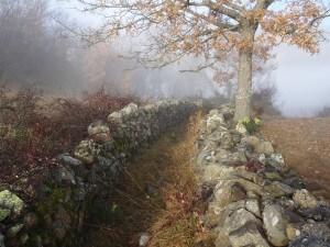 Santorens. Camino de Betesa