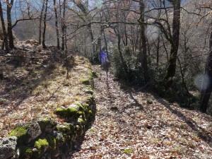Camino de Pallerol