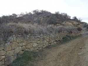 Camino de Liesa
