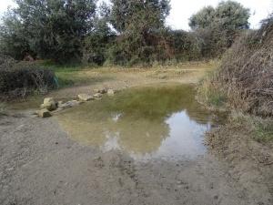 Camino de Liesa. Arroyo Rija