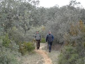 Camino de Estopiñán