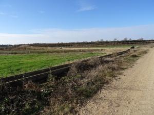 Camino de Almuniente. Canales de riego
