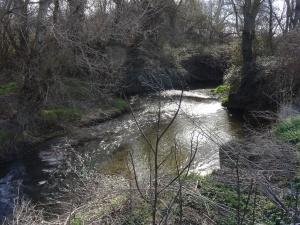 Barbués. Río Flumen