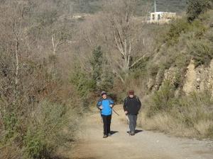 Camino de Artasona