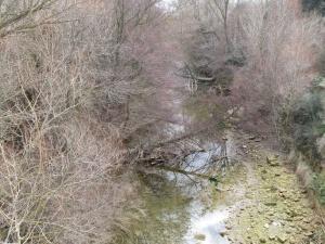 Cauce del río Guatizalema