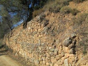 Yacimiento de Labitolosa. Muros de piedra en fincas