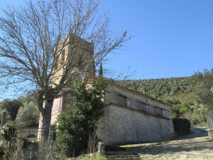 Palo. San Martín