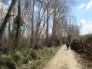 Camino del azud acequia de San Marcos