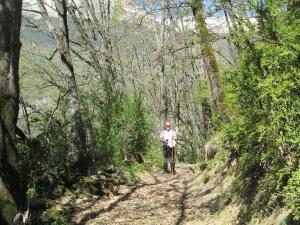 Camino de San Pedro de Tabernas