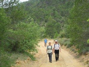 Camino de Finestras