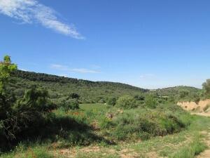 Camino de Alins del Monte. Valle del Palou