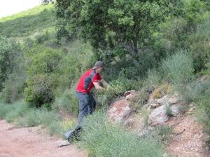 Gabriel haciendo un ramo de flores para su señora