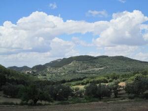 Alins del Monte. Camino de Calasanz. Tozal de la Mesa