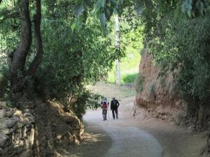 Radiquero. Camino de Alberuela de la Liena