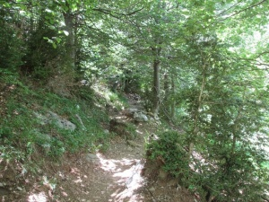 Valle de Pineta. Senda de la Cascada del Cinca