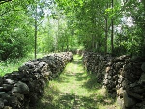 Camino de Benasque