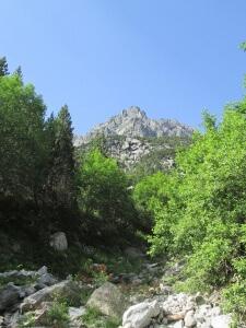 Valle de Barrosa. Sierra de Liena