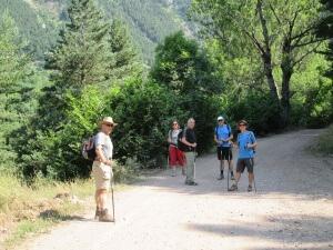 Camino de Viadós/Biadós