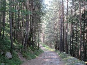 Camino de Viadós/Biadós. Llanos de San Juan
