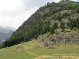 Bordas en el valle de Viadós/Biadós