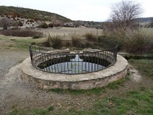Estopiñán del Castillo. Font Rodona