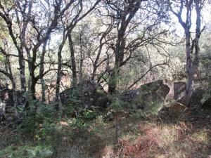 Grandes lajas de piedra camino San Martín