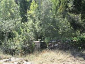Camino de Perarrúa. Antiguos huertos