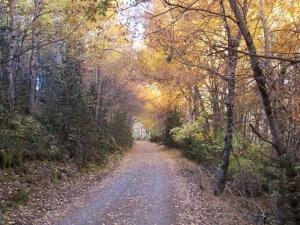 Camino de Eresué