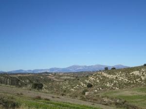 Camino El Almerge