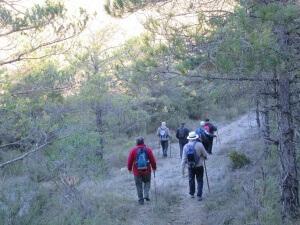 Barranco de San Vicente. Camino de Caneto