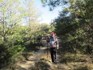 Camino de Caneto