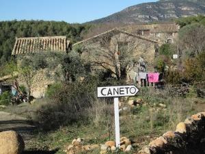 Caneto