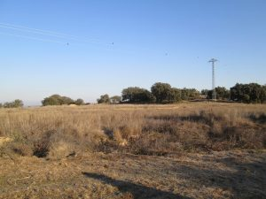 Camino Almunia de San Juan. Terrenos de secano