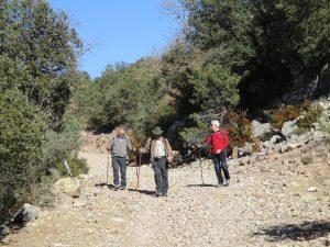 Camino de Estaña